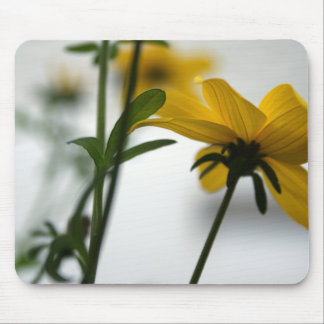 Yellow Bidens 3- Floral Photography Mouse Pad