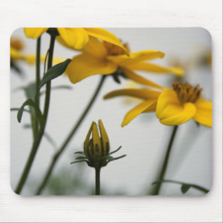 Yellow Bidens - Floral Photography Mouse Pad