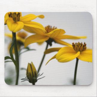Yellow Bidens Floral Photography Mousepad