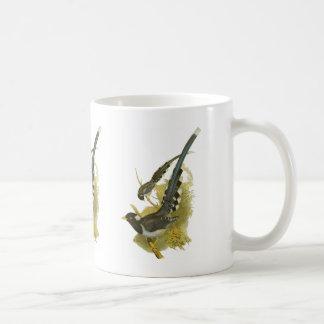 Yellow-billed Blue Magpie Coffee Mug