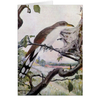 Yellow-billed Cuckoo and Tent Caterpillars Card