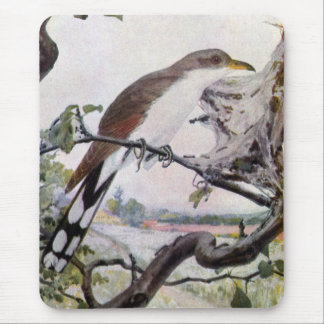 Yellow-billed Cuckoo and Tent Caterpillars Mouse Pad