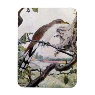 Yellow-billed Cuckoo and Tent Caterpillars Rectangular Photo Magnet