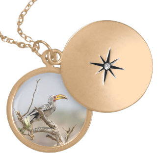 Yellow billed hornbill locket necklace