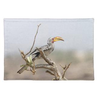 Yellow billed hornbill placemat