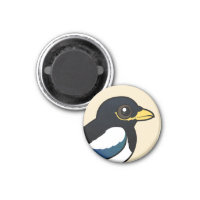 Yellow-billed Magpie Round Magnet