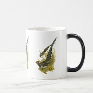 Yellow-billed (or Gold-billed) Blue Magpie Magic Mug