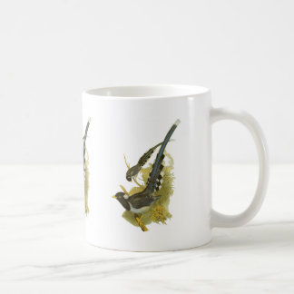 Yellow-billed (or Gold-billed) Blue Magpie Coffee Mugs