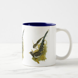 Yellow-billed (or Gold-billed) Blue Magpie Two-Tone Coffee Mug