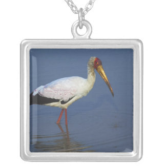 Yellow-billed Stork, Masai Mara, Kenya Silver Plated Necklace