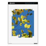 Yellow Birch Leaves iPad 3 Decals
