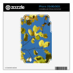 Yellow Birch Leaves Skin For The iPhone 3