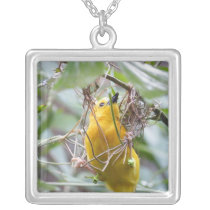 Yellow Bird Silver Plated Necklace