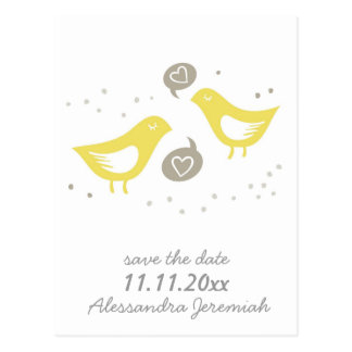 yellow birds talking about love std postcard