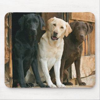 Yellow, Black, Brown Labrador Retriever Mousepad