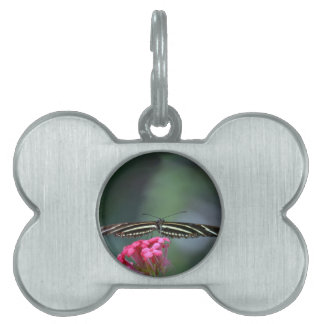 yellow black butterfly head on wings out c pet ID tag