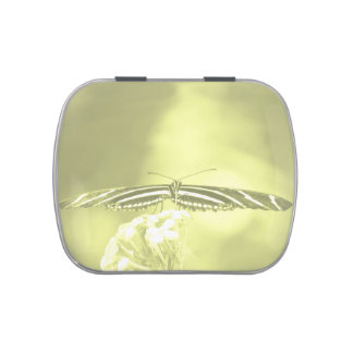 yellow black butterfly yellow fade head on wings candy tins