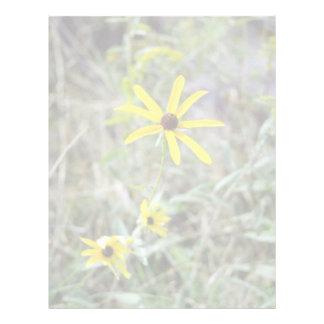 yellow Black-Eyed Susan (Rudbeckia Hirta) flowers Letterhead