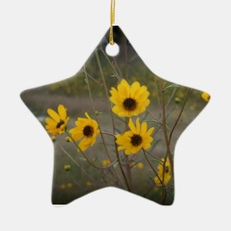Yellow black Florida Wildflower Photograph Double-Sided Star Ceramic Christmas Ornament