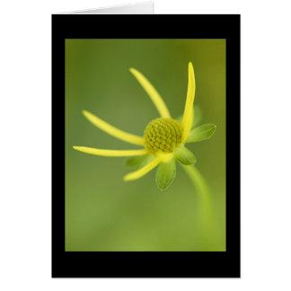 Yellow Bloom #1 Card