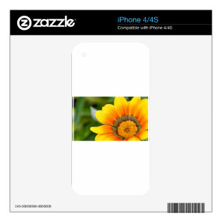Yellow Bloom Decal For The iPhone 4