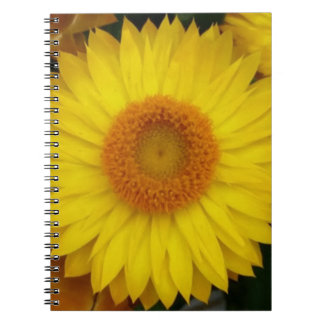 Yellow Bloom Notebook (80 Pages B&W)