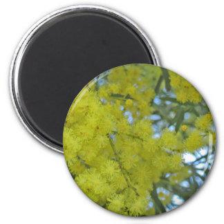 yellow blooming bush magnet