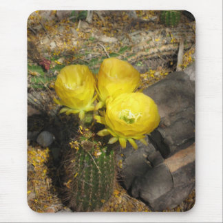 Yellow Blooming Cactus Trio Mouse Pad