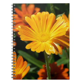 Yellow Blossoms Flowers Art Peace Love Destiny Note Book