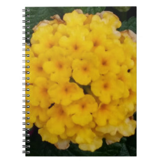 Yellow Blossoms Notebook (80 Pages B&W)