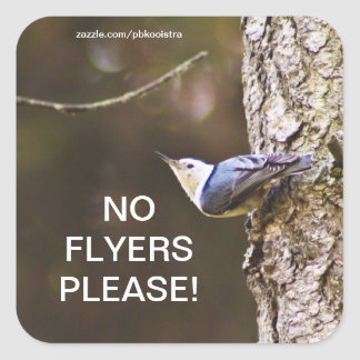 Yellow & Blue bird No Flyers Please Sticker