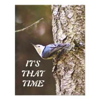 Yellow & Blue Bird Watching Party Invitation