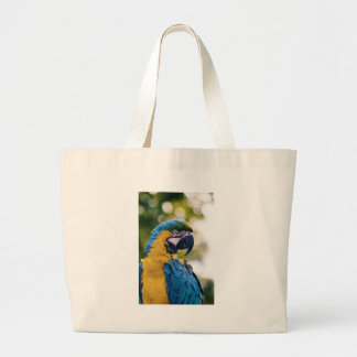 Yellow Blue Macaw Parrot Large Tote Bag