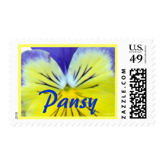 Yellow Blue Pansy Postage
