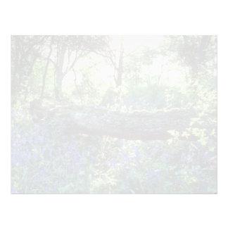 Yellow Bluebell wood, Howe Park Wood, Milton Keyne Letterhead Design