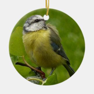 Yellow Breasted Robin Ceramic Ornament