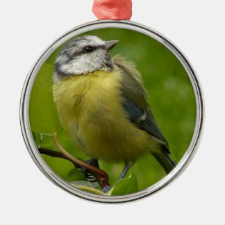 Yellow Breasted Robin Metal Ornament