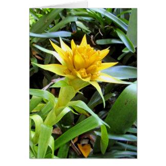 Yellow Bromeliad Card