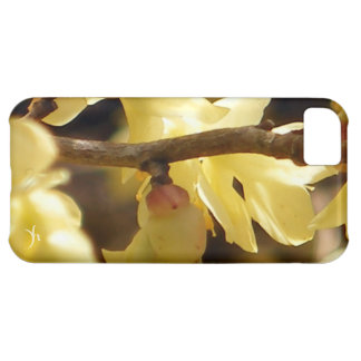 Yellow Bud Cover For iPhone 5C