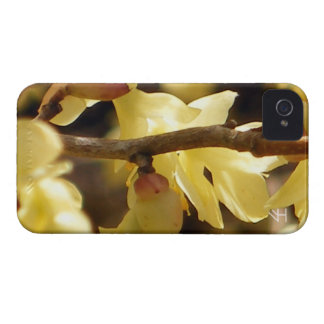Yellow Bud iPhone 4 Case-Mate Case