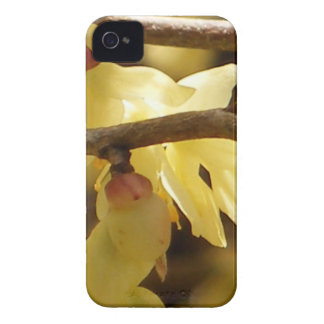 Yellow Bud iPhone 4 Cover