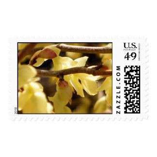 Yellow Bud Postage