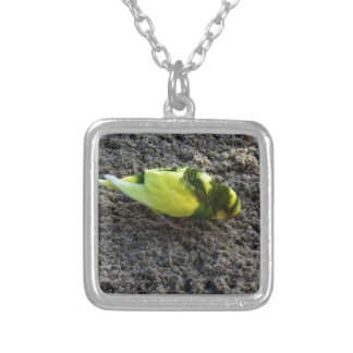 Yellow Budgie Personalized Necklace