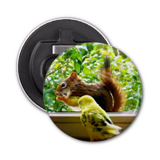 Yellow Budgie Watching Nibbling Squirrel Bottle Opener
