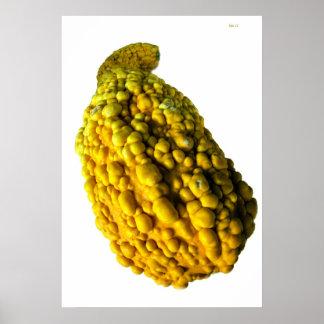 Yellow Bumpy Gourd Poster