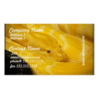 Yellow Burmese Python Business Card Template