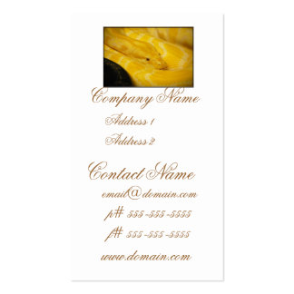 Yellow Burmese Python Business Card Templates