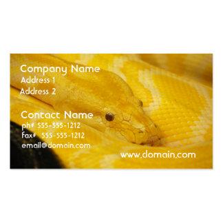 Yellow Burmese Python Business Card