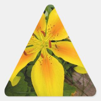 Yellow Burst Triangle Sticker