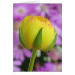 Yellow Buttercup Card